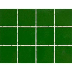 Piso Verde Telado Antipichação 1060 10x10 Extra - Strufaldi